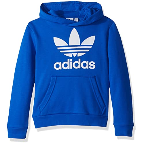 Blue adidas Hoodie: Amazon.c