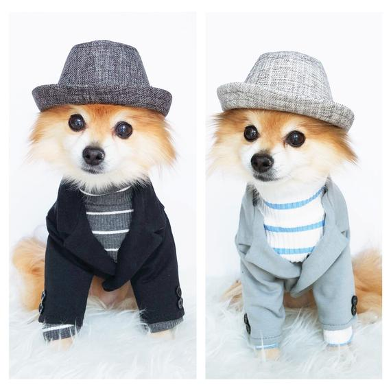Dog Soft Knit Blazers dog jackets puppy suits pet hoodies   Et