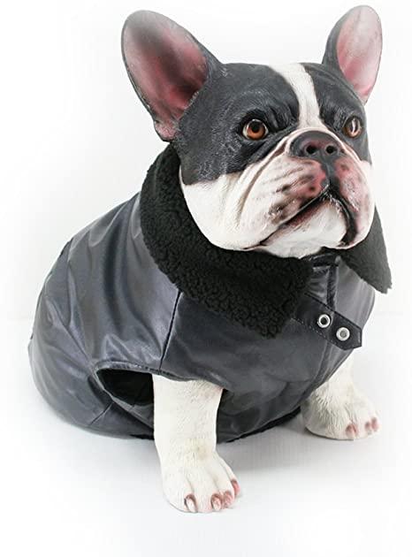 Amazon.com : Dogit Faux Leather Bomber Dog Jacket, Medium .