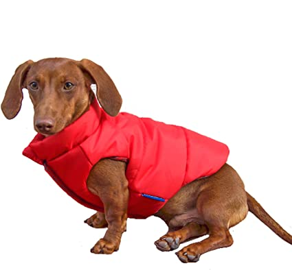 Amazon.com : DJANGO Puffer Dog Jacket and Reversible Cold Weather .