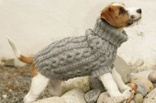 Top 5 free dog sweater knitting patterns | LoveCrafts .