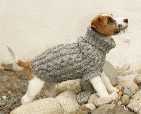 53 Best It's A Dog's Life-Clothes & Costumes images in 2020 | Dogs .