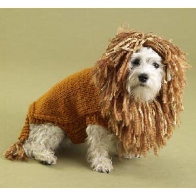 King of the Beasts Lion Dog Sweater Pattern (Knit) - Lion Brand Ya