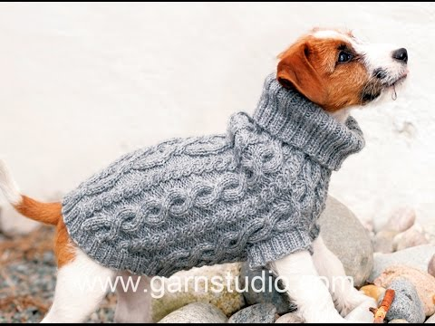 How to knit a dog coat - YouTu