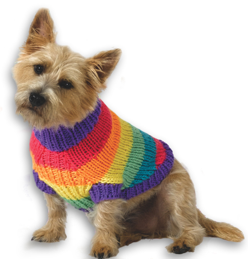 Rainbow Dog Sweater Knitting Pattern from Caron Yarn | FaveCrafts.c